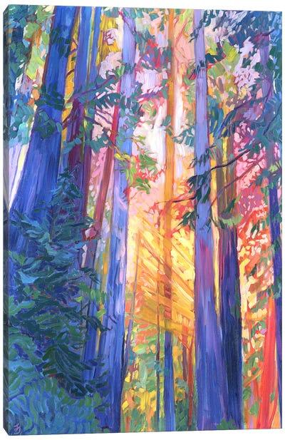 Old Souls Dream Canvas Art Print