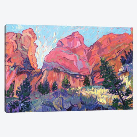 Afternoon Glory Canvas Print #JSA1} by Jessica Johnson Canvas Art Print