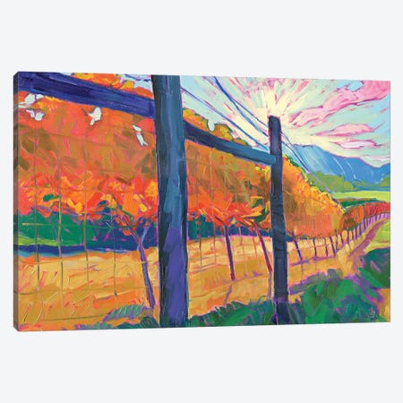 Sunlit Wine Canvas Print #JSA23} by Jessica Johnson Canvas Art