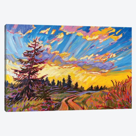 Tranquil Road Canvas Print #JSA24} by Jessica Johnson Art Print