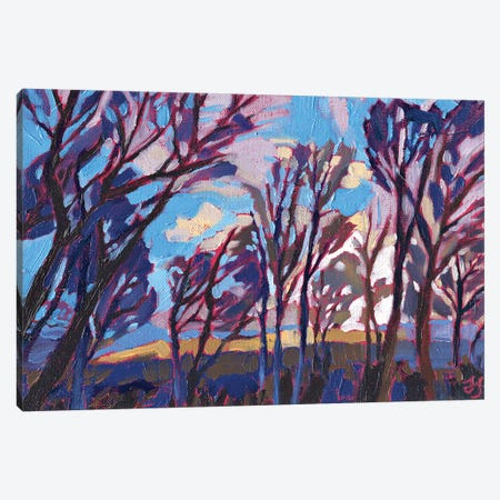 Bus Stop Sky Canvas Print #JSA4} by Jessica Johnson Canvas Artwork