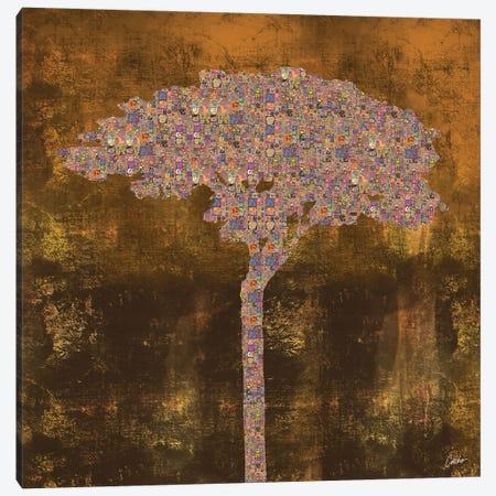 Sunset Canvas Print #JSC40} by Jose Cacho Canvas Artwork