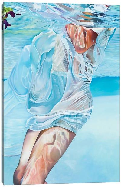 Emerger Canvas Art Print