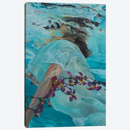 Emerger II Canvas Print #JSD15} by Josep Moncada Art Print