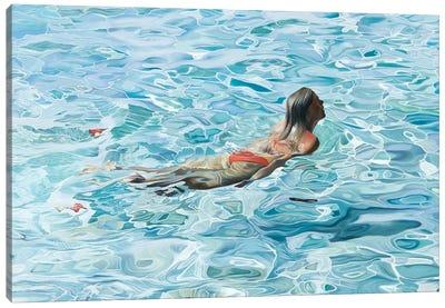 Float Canvas Art Print