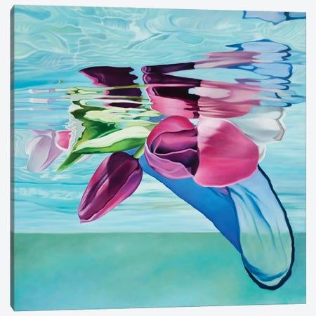 Joyful Calm Canvas Print #JSD24} by Josep Moncada Canvas Wall Art