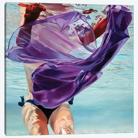 Plunged Inside .. What You Think You Knew Canvas Print #JSD29} by Josep Moncada Art Print