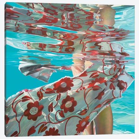 Snail Canvas Print #JSD35} by Josep Moncada Art Print