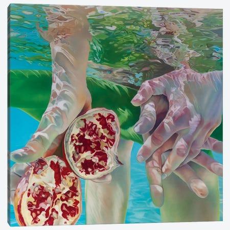 Desired Dream Canvas Print #JSD45} by Josep Moncada Canvas Wall Art