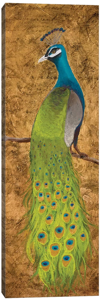 Peacocks I Canvas Art Print