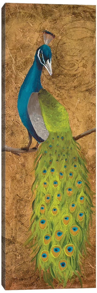 Peacocks II Canvas Art Print