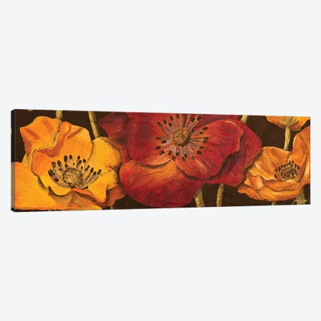 Dazzling Poppies I (black background) 3-Piece Canvas #JSF9} by Josefina Canvas Art
