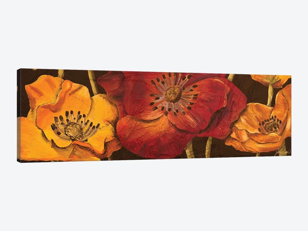 Dazzling Poppies I (black background) by Josefina 1-piece Canvas Art