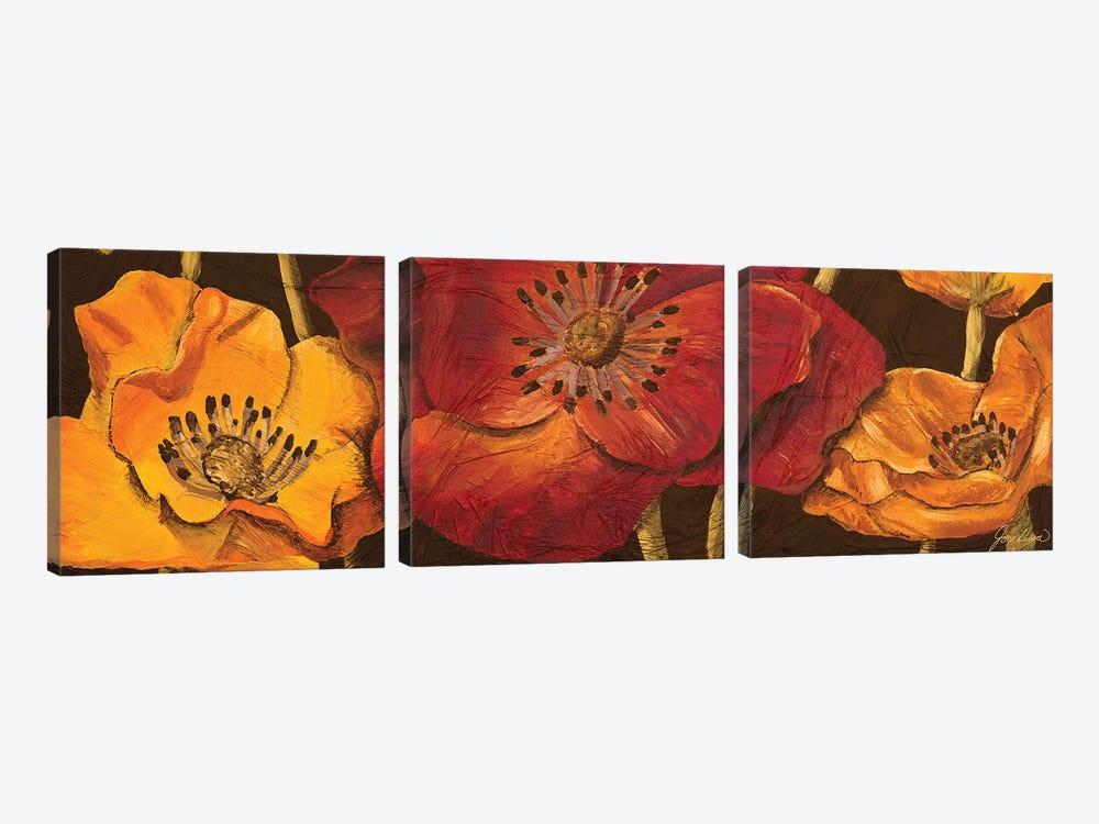 Dazzling Poppies I (black background) by Josefina 3-piece Canvas Art