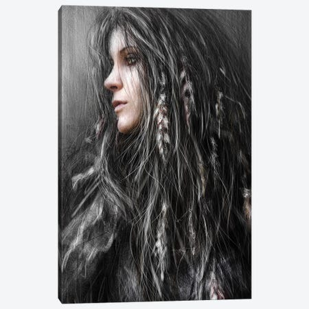 Feathers In Her Hair Canvas Print #JSG2} by Justin Gedak Art Print