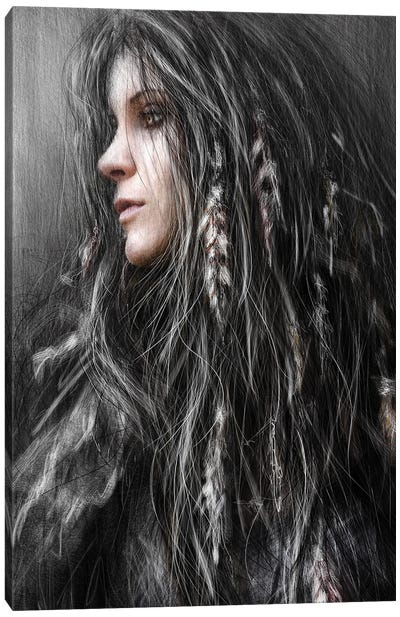 Feathers In Her Hair Canvas Art Print