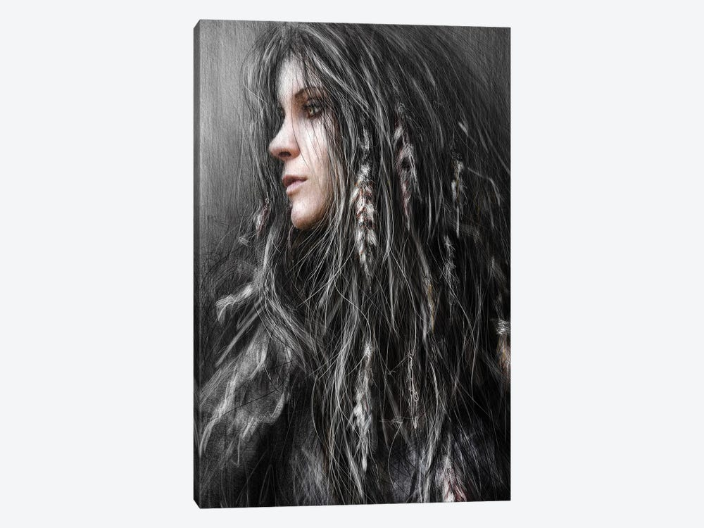 Feathers In Her Hair by Justin Gedak 1-piece Canvas Artwork