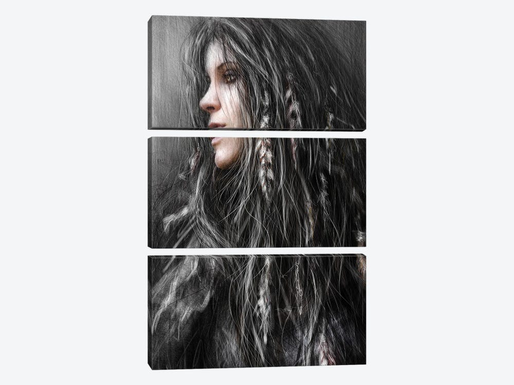 Feathers In Her Hair by Justin Gedak 3-piece Canvas Art