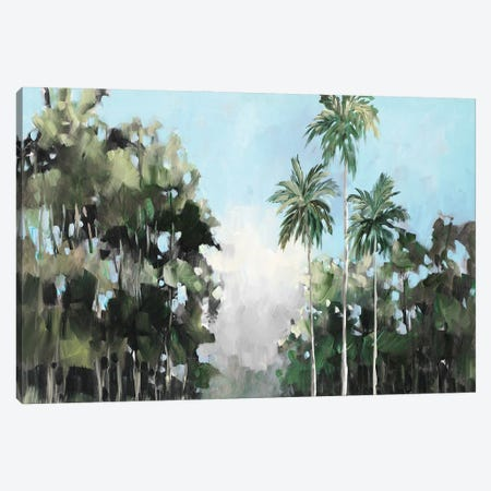 Palms on the Coast Canvas Print #JSL102} by Jane Slivka Canvas Wall Art