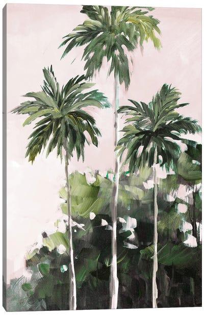 Palms Under A Pink Sky Canvas Art Print