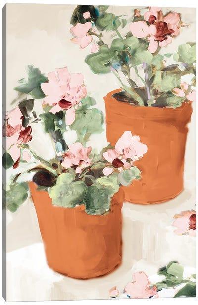 Potted Pink Geraniums Canvas Art Print