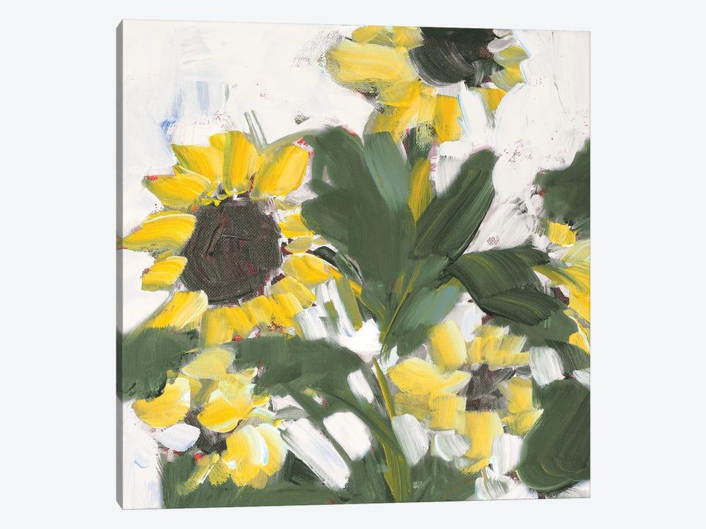 Sunflower Garden by Jane Slivka 1-piece Canvas Art Print