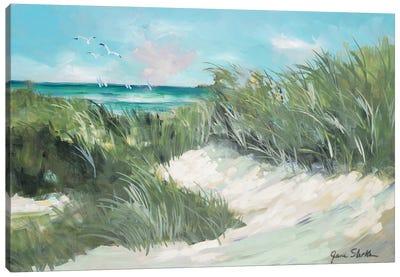 Beach Coast Grass Canvas Art Print