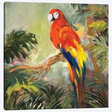 Parrots at Bay I Canvas Print #JSL50} by Jane Slivka Canvas Art