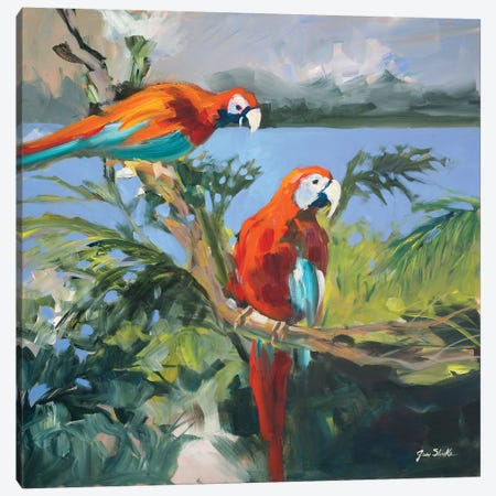 Parrots at Bay II Canvas Print #JSL51} by Jane Slivka Canvas Art