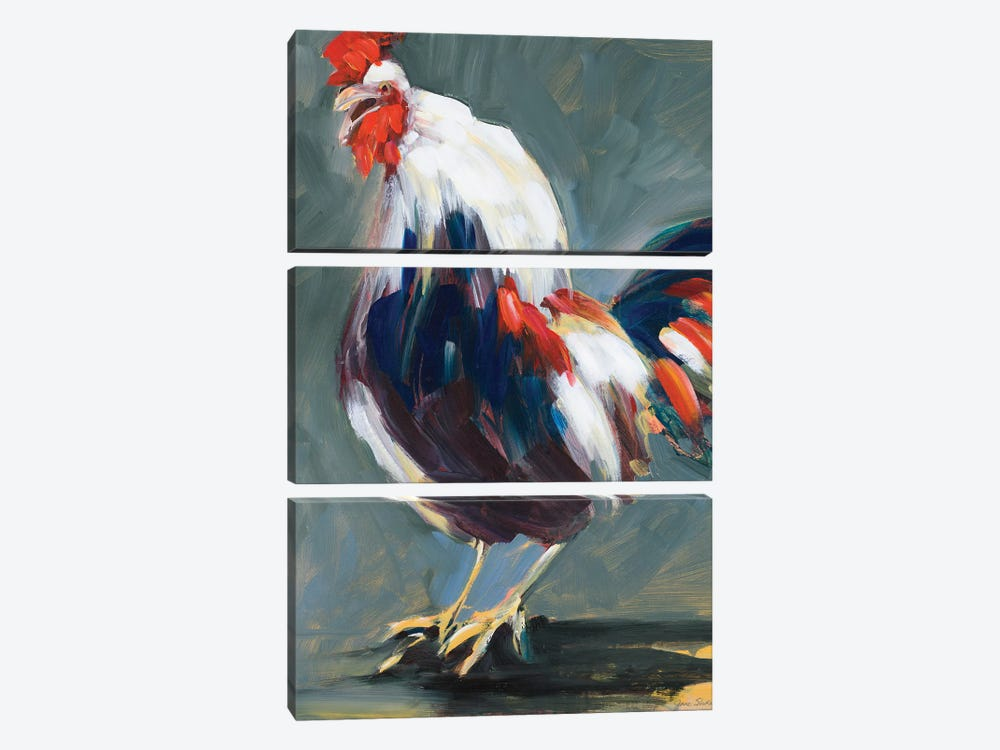 Rising Rooster by Jane Slivka 3-piece Canvas Art