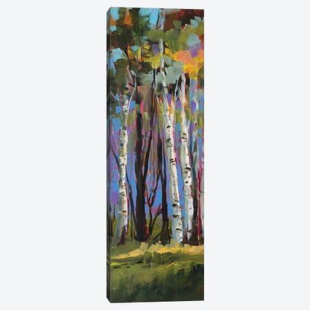 Birch Trees Canvas Print #JSL8} by Jane Slivka Canvas Artwork