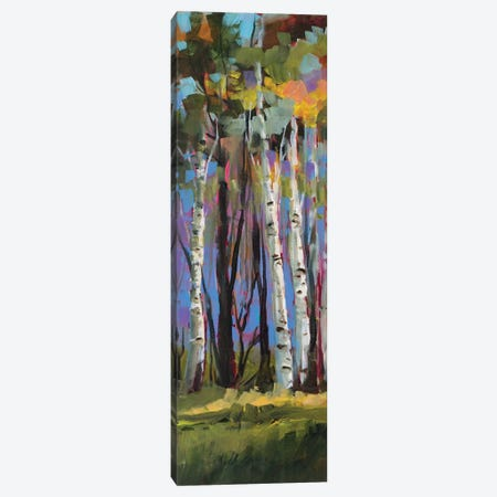 Birch Trees Canvas Print #JSL8} by Jane Slivka Canvas Artwork