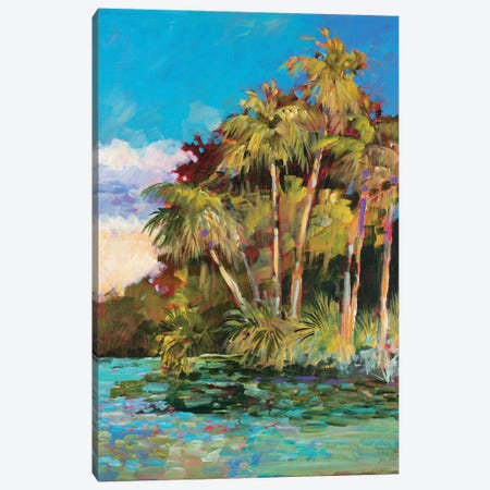 Tropical Side of Town Canvas Print #JSL94} by Jane Slivka Canvas Print