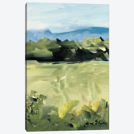 Abstract Scenery Canvas Print #JSL96} by Jane Slivka Art Print