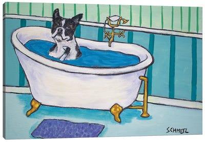 Boston Terrier Bath Canvas Art Print