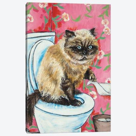 Burmese Cat #2 Canvas Print #JSM19} by Jay Schmetz Art Print