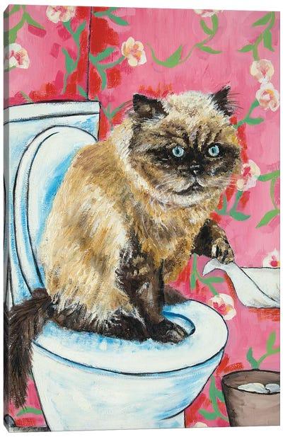 Burmese Cat #2 Canvas Art Print