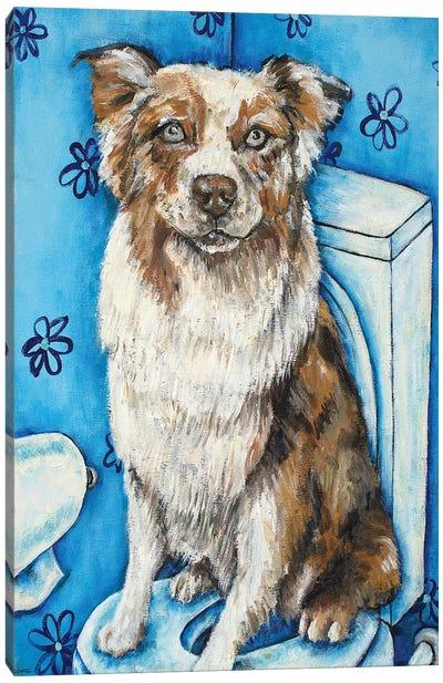 Australian Shepherd #2 Canvas Art Print