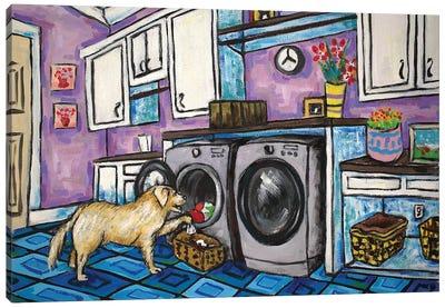 Golden Retriever Laundry Canvas Art Print