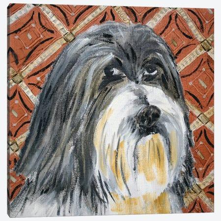 Lhasa Apso 3-Piece Canvas #JSM41} by Jay Schmetz Canvas Artwork