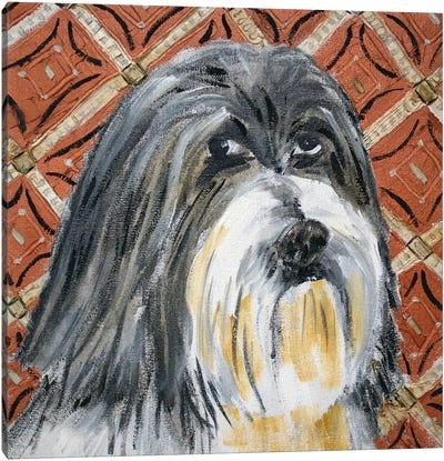 Lhasa Apso Canvas Art Print