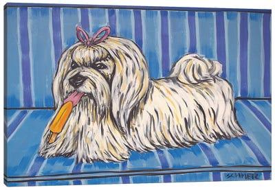 Maltese Popsicle Canvas Art Print