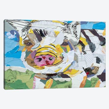 Pig Collage Canvas Print #JSM48} by Jay Schmetz Canvas Art