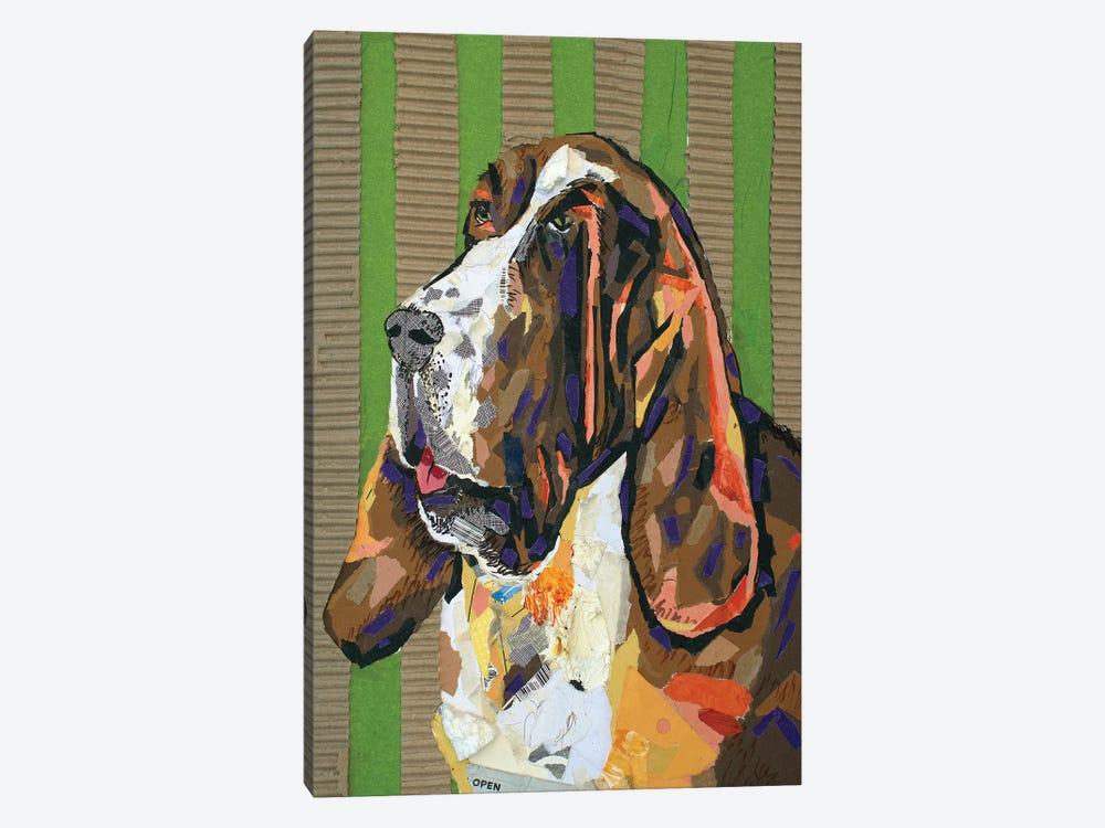 Basset Hound Collage by Jay Schmetz 1-piece Canvas Artwork