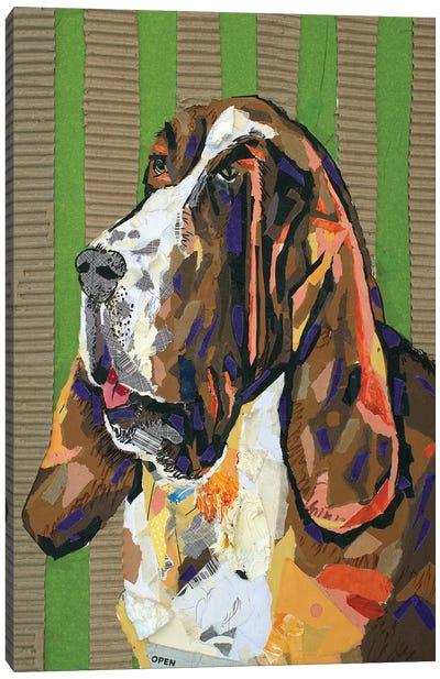 Basset Hound Collage Canvas Art Print