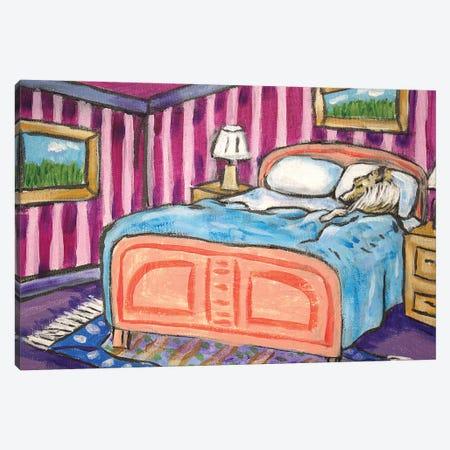 Shetland Sheepdog Sleeping Canvas Print #JSM62} by Jay Schmetz Canvas Artwork