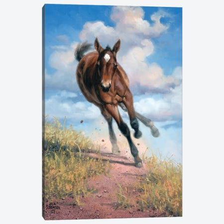 Wild Oats Canvas Print #JSO11} by Jack Sorenson Canvas Art Print