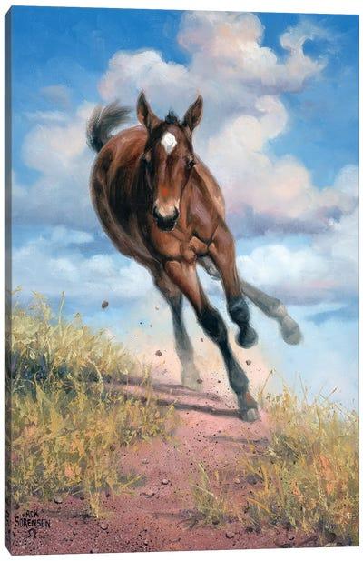 Wild Oats Canvas Art Print