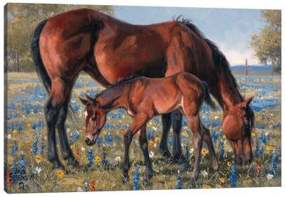 Wildflower Canvas Art Print