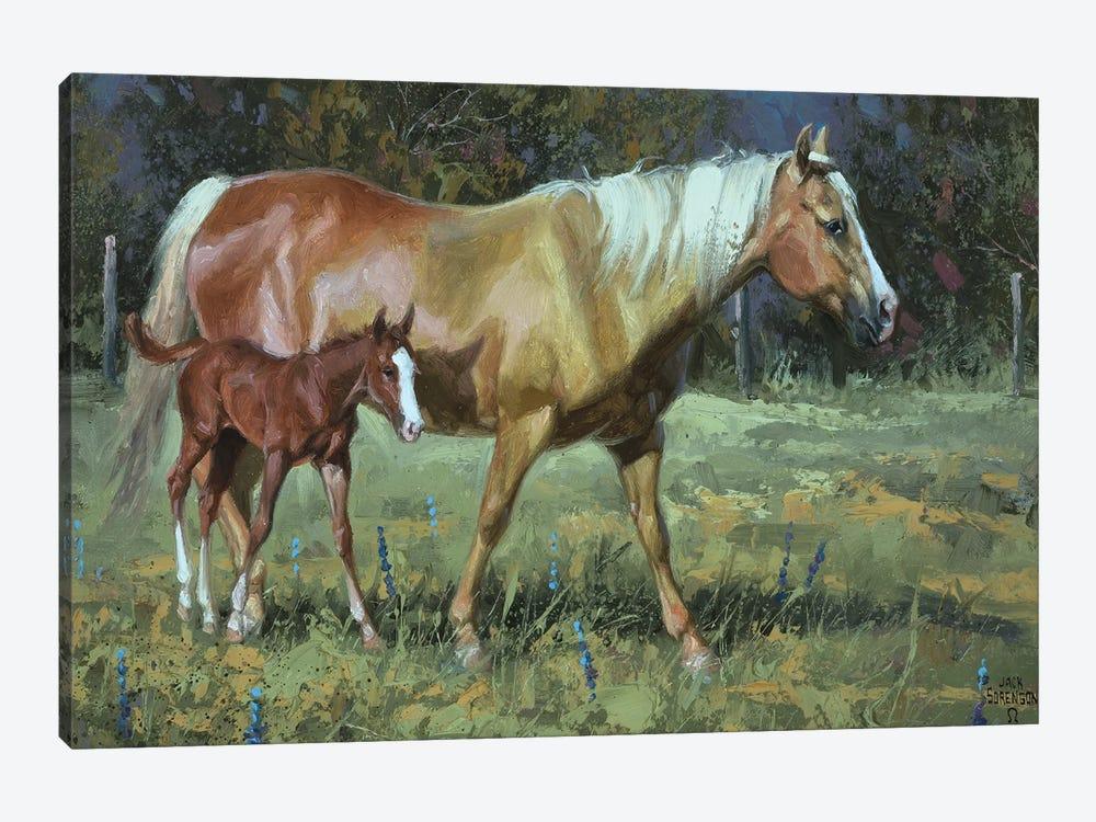 Field Of Dreams by Jack Sorenson 1-piece Canvas Art Print